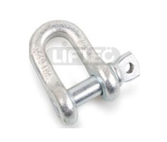 US Type Forged Dee Shackle